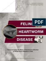 Feline Heartworm