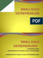 Small Scale Entrepreneur