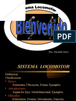 Clase Magistral Locomotor