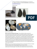 Studying effects of some surfactants and detergents on filter-feeding bivalves; by