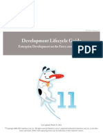 Sales Force Development Lifecycle