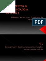 PPT Fundamentos Da Neuropsicologia