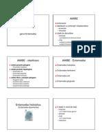 Protozoare - Genul Entamoeba