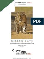Killer Cats