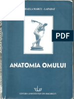 Anatomia Omului - Mihaela Marcu-Lapadat