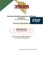 Proceso Organizacional