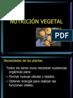 nutricionvegetal