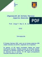 01IntrSNerviosoNeurociencias2011