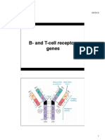 B and T Cell Rec. Genes Handout 2012