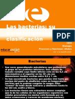 bacteriasvirus
