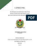 Laopran PKL Keanekaragaman Jenis Ikan Air Tawar Di Rawa Mangga Dua Kelurahan Tarus Kecamatan Kupang Tengah Kab
