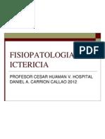33_fisiopatologia_ictericia