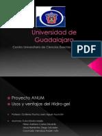 Proyecto hidrogel