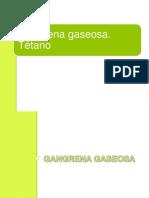 Seminario Gangrena y Tetano