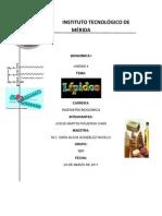 TAREA DE BIOQUÍMICA UNIDAD 4 (LIPIDOS)