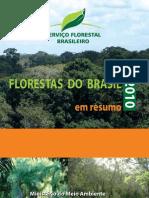 Livro Florestas Brasil Em Resumo 2010 Portugues