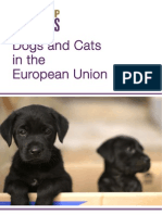 Dogs and Cats Public