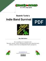 BeatnikTurtle-IndieBandSurvivalGuide