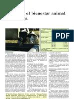 El Agua y El Bienestar Animal, Bebederos
