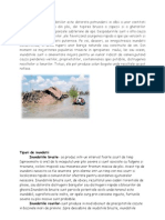 efecte inundatii