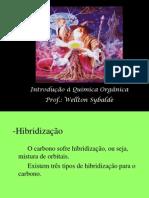 AULA - HIBRIDAÇÃO
