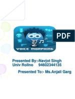 voicemorphingppt-navi baghria