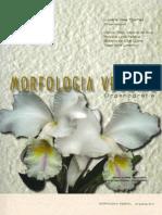 [Livro] Morfologia Vegetal, Organografia - Luciana Thomaz