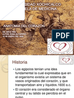 anatoma-de-corazn-1233692228155885-2