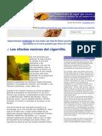 Causas Del Cigarro