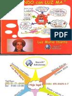 Libro Para Mapas Mentales Mapeando