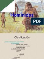 Homínidos