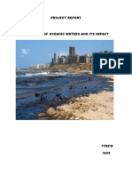 Pollution of Oceanic Waters and Its Impact