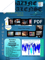 periodico 2011