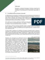 Desarrollo Local y a 21