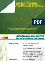 114el Platano en Colombia