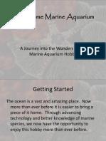 The Home Marine Aquarium1