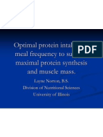 Optimal Protein Intake and Meal Frequency to Support 2003 1213463554793645 8