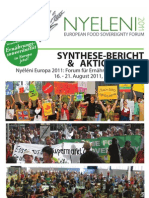 DE - Nyeleni11 Synthesis