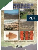 Al Sur de Pachacamac. Introduccion a Arqueologia de la Costa Centro Sur Peru