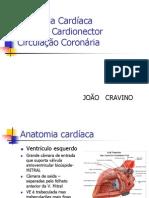 Anatomia cardíaca e coronária
