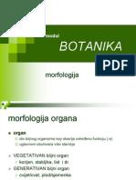 botanika priručnik