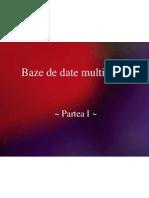 Baze de Date Multimedia_1