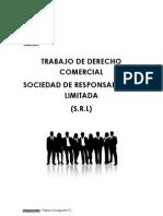 Sociedad de Responsabilidad Limitad2