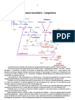 Hemostaza Secundara - Coagularea