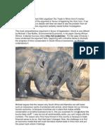 Rhinoprotect-RhinoEcon-13022012v1