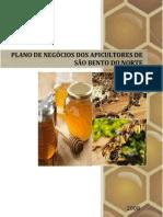 PLANO DE NEG%C3%93CIOS DA APILCUTURA DE S%C3%83O BENTO DO NORTE