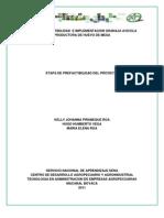 Estudio de Factibilidad e Implementacion Granaja Avicola Product or A de Huevo de Mesa