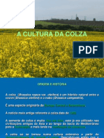 CA_II_Colza 2011