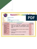 Programacion Curricular Final