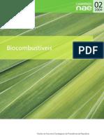 Biodiesel Caderno NAE